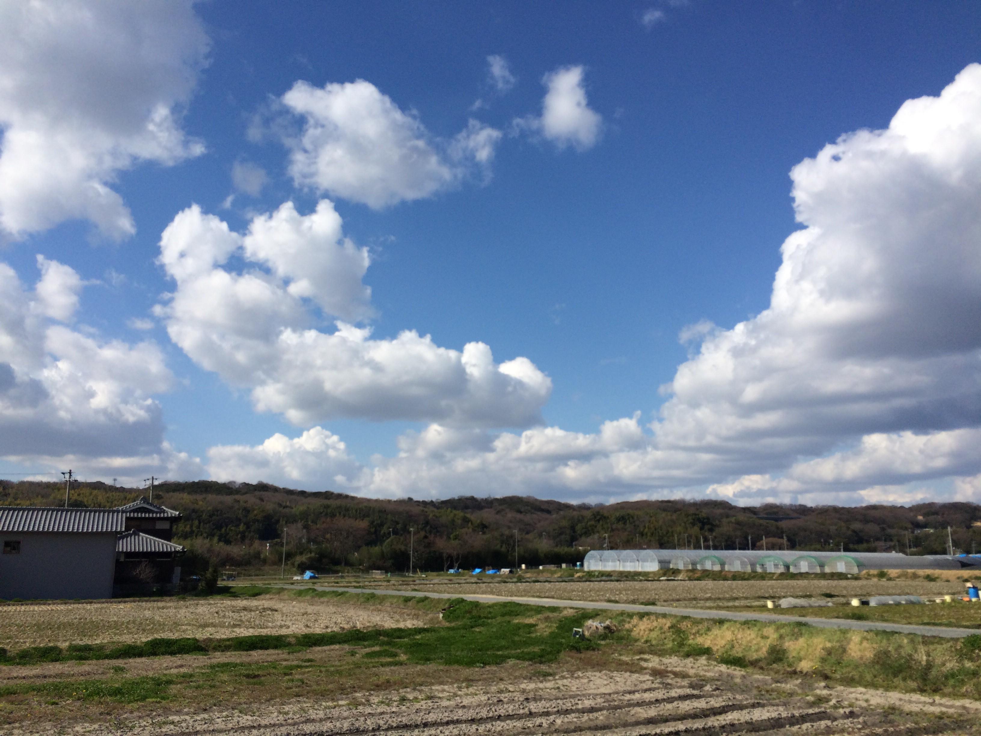 春を待つ伊川の田んぼ
